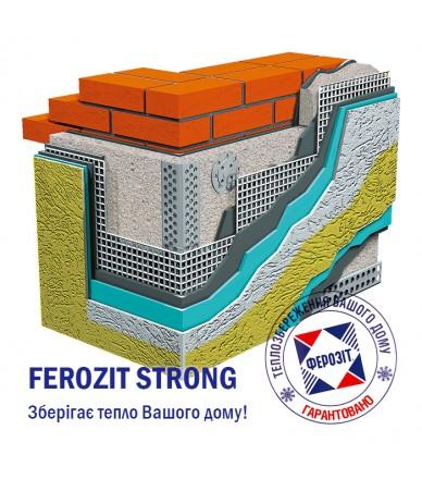 FEROZIT STRONG 100