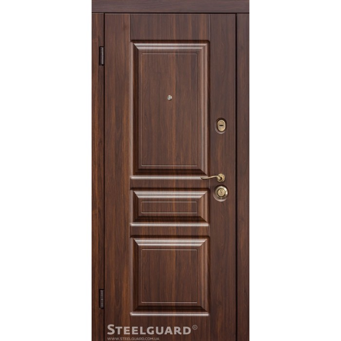 Двері Steelguard Termoscreen