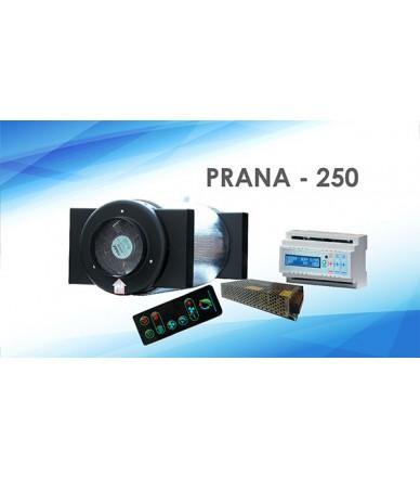 PRANA - 250
